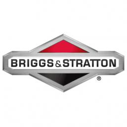 Matériel Motoculture Briggs & Stratton - Munster Entretien vendeur distributeur
